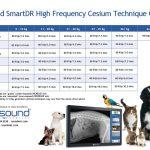 SmartDR Cesium kgs