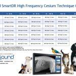SmartDR Cesium lbs